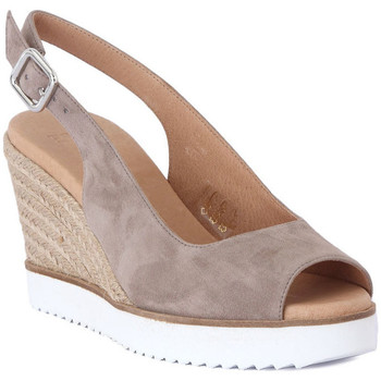 Chaussures Femme Sandales et Nu-pieds Frau CAMOSCIO TAUPE     91,9