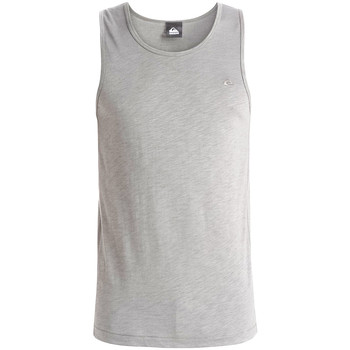Vêtements Homme Débardeurs / T-shirts sans manche Quiksilver Tank Everyday Slub light grey