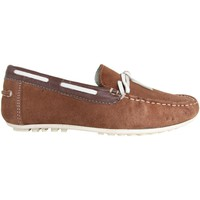 Chaussures Homme Mocassins MTNG 83515 Marrón