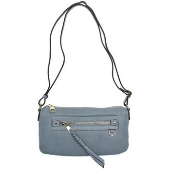 Sacs Femme Sacs Bandoulière Francinel Sac  en cuir porté travers ref_lhc39315-bleu Bleu