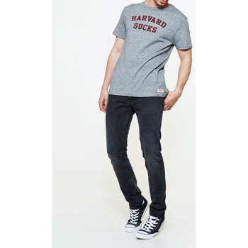 Vêtements Femme T-shirts manches courtes Tsptr Tee Shirt  Harvard Sucks Pocket Tee Grey Marl Gris Chine Homme Gris