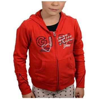 Vêtements Garçon Sweats Geox Felpa cappuccio Sweat