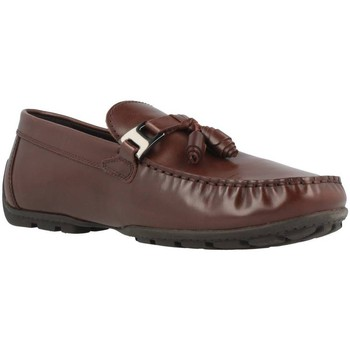 Chaussures Femme Mocassins Geox U MONET C Marron
