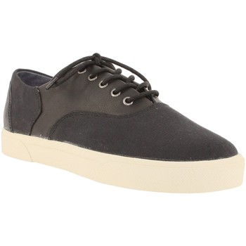 Baskets basses Armistice hope trainer m