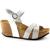 Chaussures Femme Sandales et Nu-pieds Gemma 1401 chaussures blanches femme wedge liège strap sandals Bianco