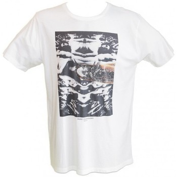 Vêtements Homme T-shirts manches courtes Insight T-Shirt  Reflections - Dusted blanc