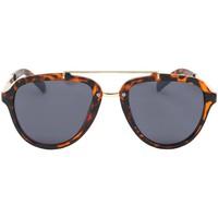 Montres & Bijoux Homme Lunettes de soleil Eye Wear Lunettes de soleil Aviateur Vintage Marron Ponza Marron