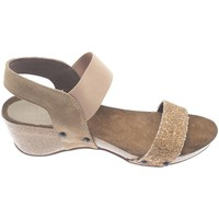 Chaussures Femme Sandales et Nu-pieds Cheis CUÑA  CREPELINA ANTE/GLITER Multicolore
