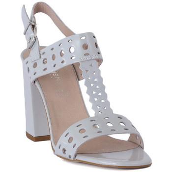 Chaussures Femme Sandales et Nu-pieds Carmens Padova ABRASIVO Grigio
