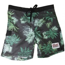 Vêtements Homme Shorts / Bermudas Insight Boardshort  Jungle Boardy - No Return Vert