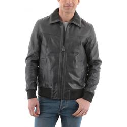 Vêtements Homme Vestes en cuir / synthétiques Redskins Foxter Iron Gris