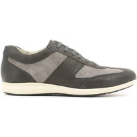 Chaussures Homme Baskets basses Stonefly 106770 Chaussures classiques Man Gris Gris