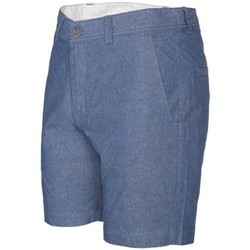Vêtements Homme Shorts / Bermudas Volcom Short  Frickin Slm Mix - Grey Blue Gris