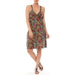 Vêtements Femme Robes courtes By La Vitrine Robe Bretelle Cocody imprimée Fleurs Multicolor