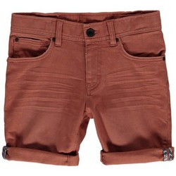 Vêtements Garçon Shorts / Bermudas O'neill Short  Lb Stringer - Cedar Wood Vert