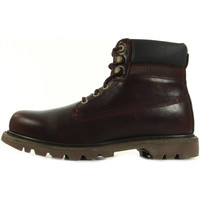 Chaussures Homme Boots Caterpillar Colorado Burgundy rouge