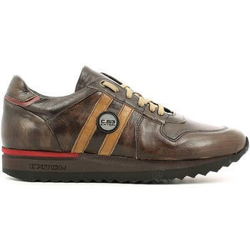 Chaussures Homme Baskets basses Rogers 555 Sneakers Man Brun Brun