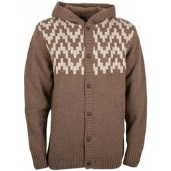 Vêtements Homme Sweats Billabong Pull  Killaz - Earth Marron