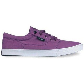 Chaussures Femme Baskets basses DC Shoes Chaussures  Bristol Canvas - Purple Violet