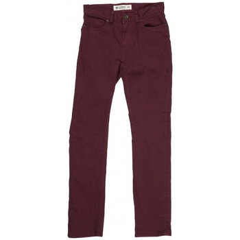 Vêtements Garçon Pantalons 5 poches Element Pantalon  Boom Pt Boy - Brown Purple Marron