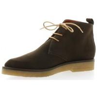 Chaussures Femme Boots Elizabeth Stuart Boots cuir velours Vison