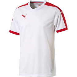 T-shirts manches courtes Puma Maillot junior  Pitch