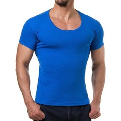 Vêtements Homme T-shirts & Polos Young & Rich Tee shirt homme fashion Tee shirt 874 bleu roi Bleu