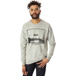 Vêtements Homme Sweats Authentic Dope Sweat Shirt  Robin Gris Homme Gris