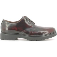 Chaussures Homme Derbies Nero Giardini A604490U Richelieus Man Bordo' Bordo'