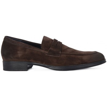 Chaussures Homme Ville basse Frau SUEDE  CAFFE     95,4