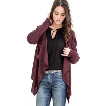 Vêtements Femme Gilets / Cardigans Le Temps des Cerises Cardigan  Pulsar Cramby Violet