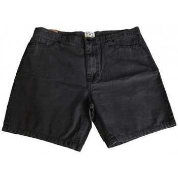 Vêtements Homme Shorts / Bermudas Insight Short  Slacker - Floyd Black Noir