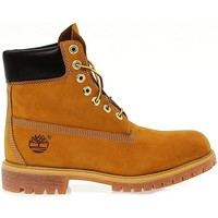 Chaussures Femme Boots Timberland Chaussures  Af 6in Prem Nb Yellow Marron Clair