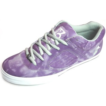 Chaussures Homme Baskets basses Emerica Reynolds 3 Purple Violet