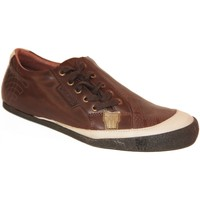 Chaussures Homme Baskets basses Fenchurch samples shoes  FEMLAT BROWN MEN Marron