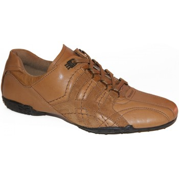 Chaussures Homme Baskets basses Fenchurch samples shoes  FENZAP TAN MEN Marron