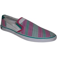 Chaussures Femme Slips on Osiris samples shoes SLIP ON  SCOOP AS STRIPES WOMEN Multicolore