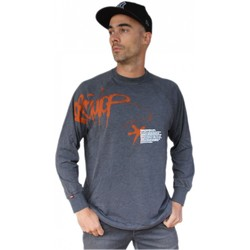 Vêtements Homme Sweats Hixsept Tee-shirt graffiti Collector  Zetag GRIS