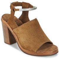 Chaussures Femme Sandales et Nu-pieds Shabbies MARZIO Marron