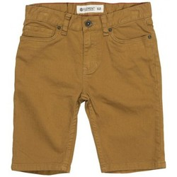 Vêtements Garçon Shorts / Bermudas Element Short  Boom Wk Boy - Curry Marron