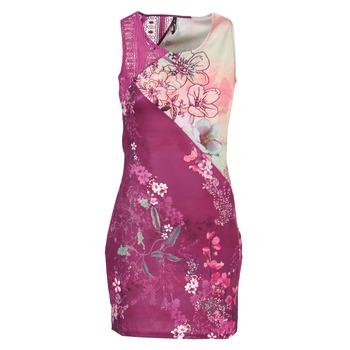 Vêtements Femme Robes courtes Smash GRETCHEN Rose