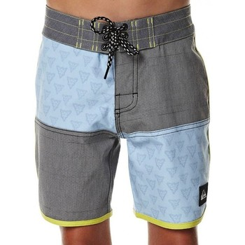 Vêtements Homme Shorts / Bermudas Quiksilver Boardshort  Dane - Grey Gris