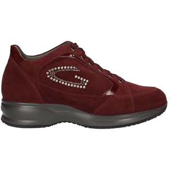 Chaussures Femme Baskets basses Alberto Guardiani SD51371B/W/SV38 BORDEAUX