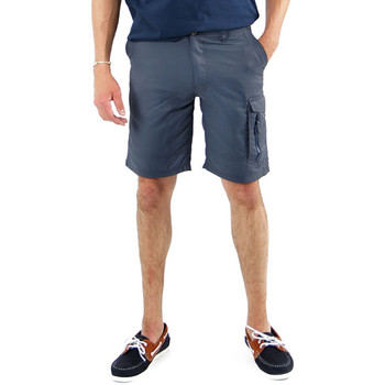 Vêtements Homme Shorts / Bermudas Sun Valley Romeoy gris bleu