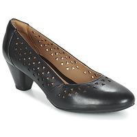 Chaussures Femme Escarpins Clarks DENNY DALLAS Noir