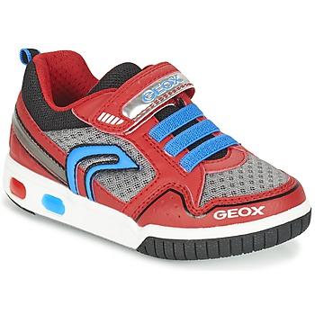 Chaussures Garçon Baskets basses Geox J GREGG B Rouge / Bleu