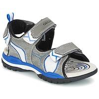 Chaussures Garçon Sandales sport Geox J BOREALIS B. D Gris / Bleu