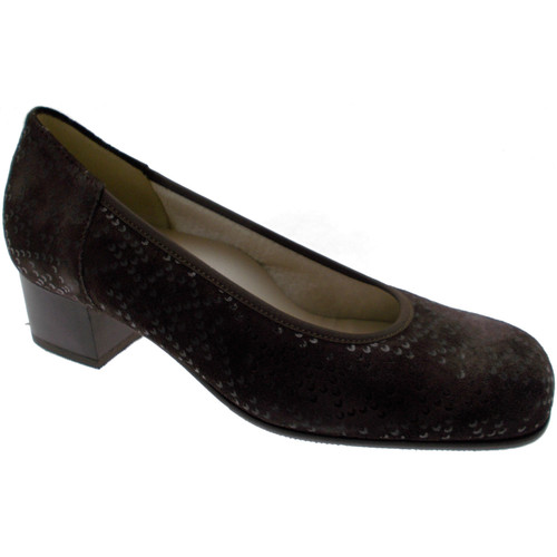 Chaussures Femme Escarpins Loren LOP5414ma marrone