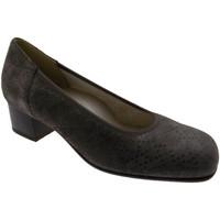 Chaussures Femme Escarpins Calzaturificio Loren LOP5414to tortora