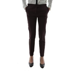 Vêtements Femme Chinos / Carrots Yaya pantalons  021721-625 marron marron